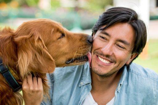 10 beneficios científicos de tener un perro