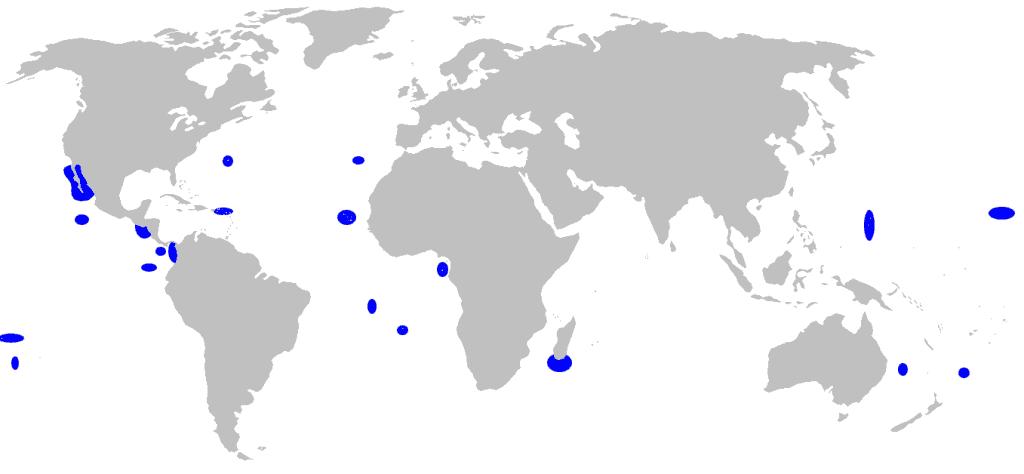 Distribución del tiburón de las Islas Galápagos (Hábitat)