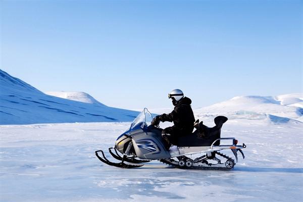 La vida en el Polo Norte