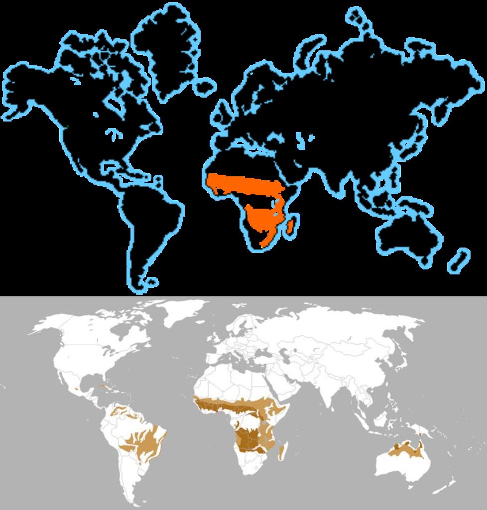 Zona geográfica