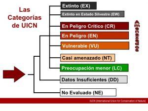 Lista roja UICN